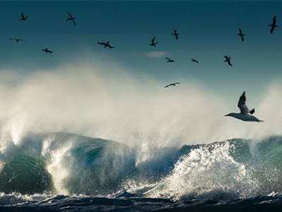 irelands ocean