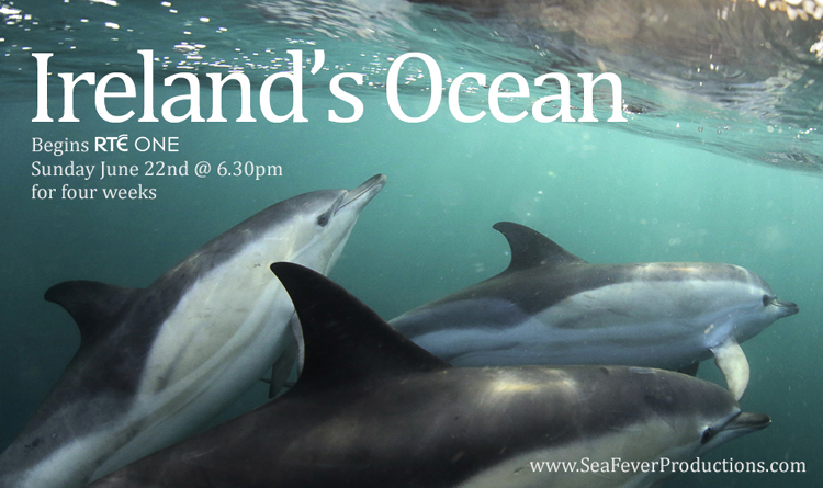 'Ireland's Ocean' begins on RTÉ One – Sunday June 22nd @ 6.30pm.