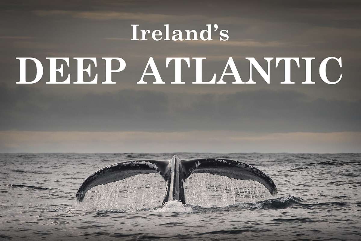 Ireland's DEEP ATLANTIC selected for another international film festival