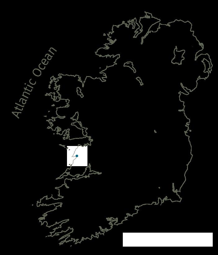 Sea fever Ireland
