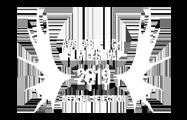 silver branch selection avalible light Film Festival 2019